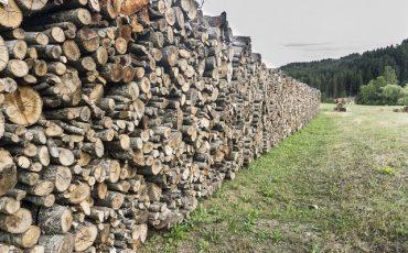 Drewno ułożone w stosy